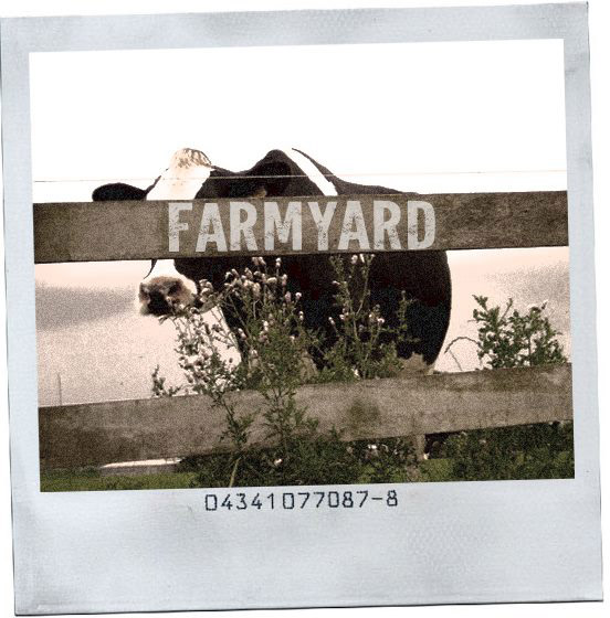 FARMYARD RECORDS
